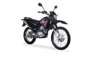 Autopar Comercial Representantes De Yamaha En Paraguay
